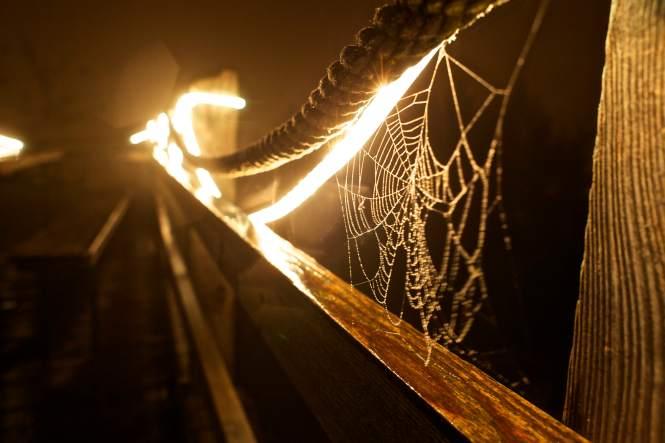 Night at Chalet Martin. ©LightShedPictures